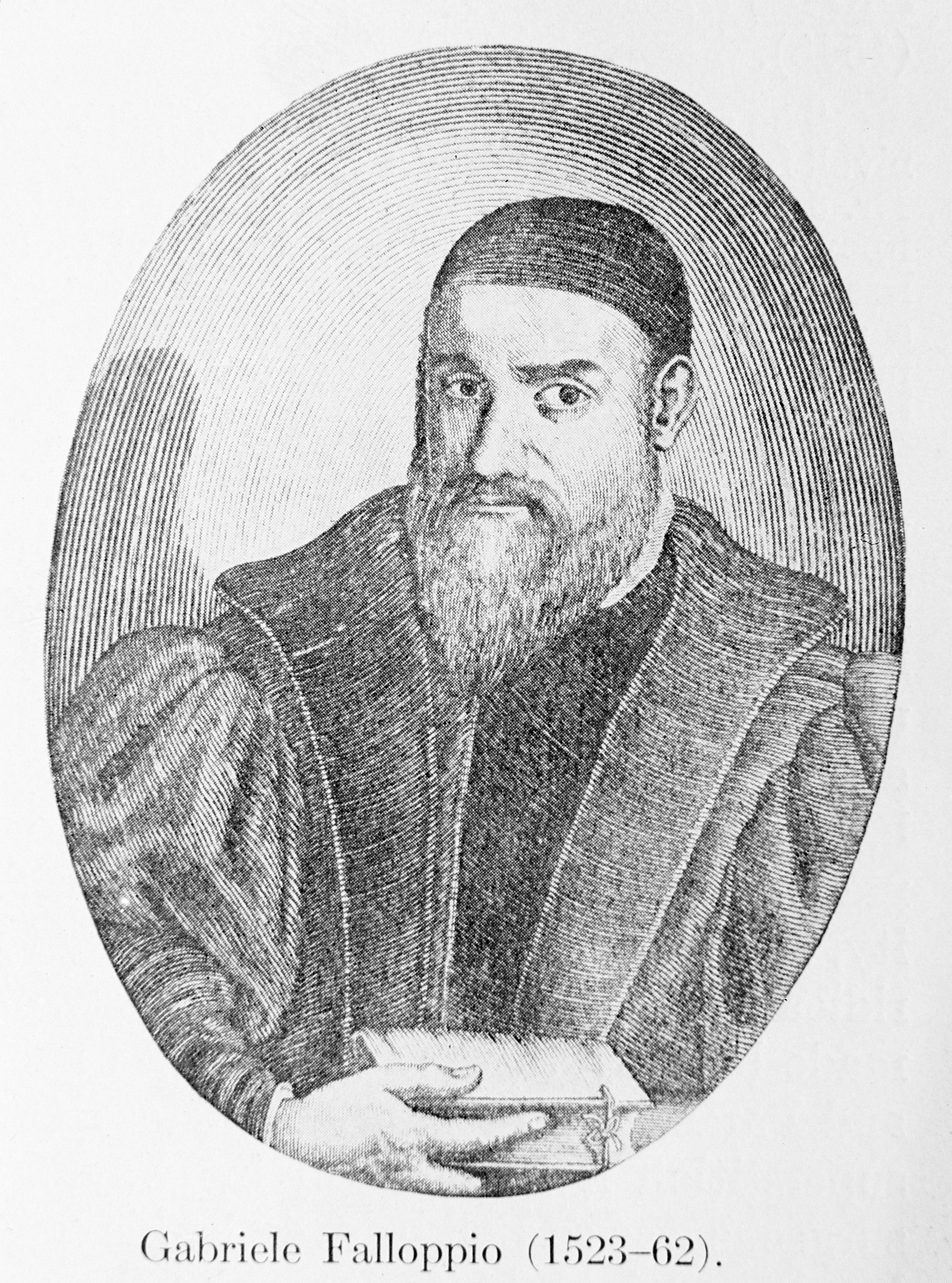 M0002609 Portrait of Gabriello Fallopio (1523-1562)