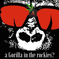 gorillas in the rockies