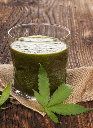 Marijuana Raw Smoothie V_4