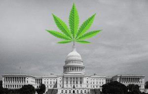 congress-marijuana1