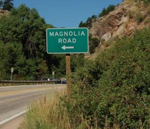 magnolia road
