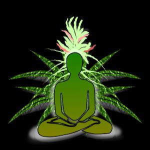 meditate-w-mary