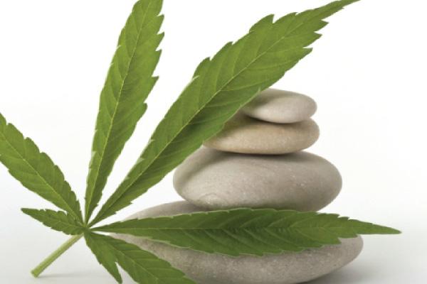 cannabis massage body