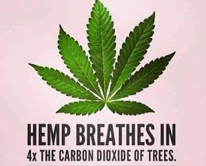 hemp carbon dioxide