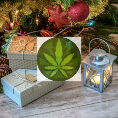 cannabis gift guide feature