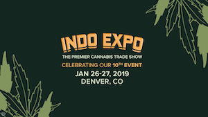 indo expo feature