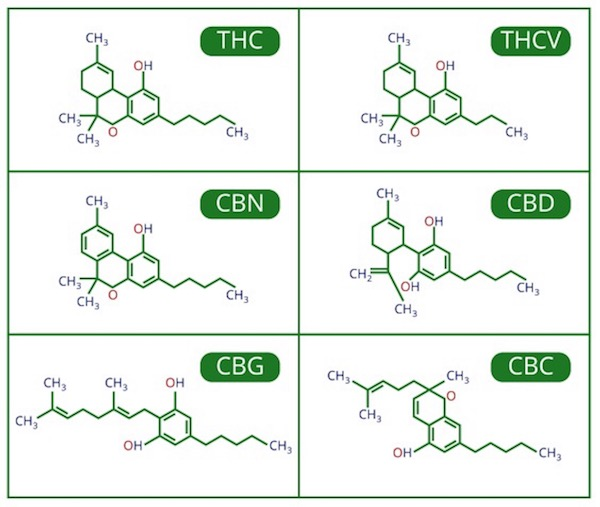 table-of-cannabinoids copy