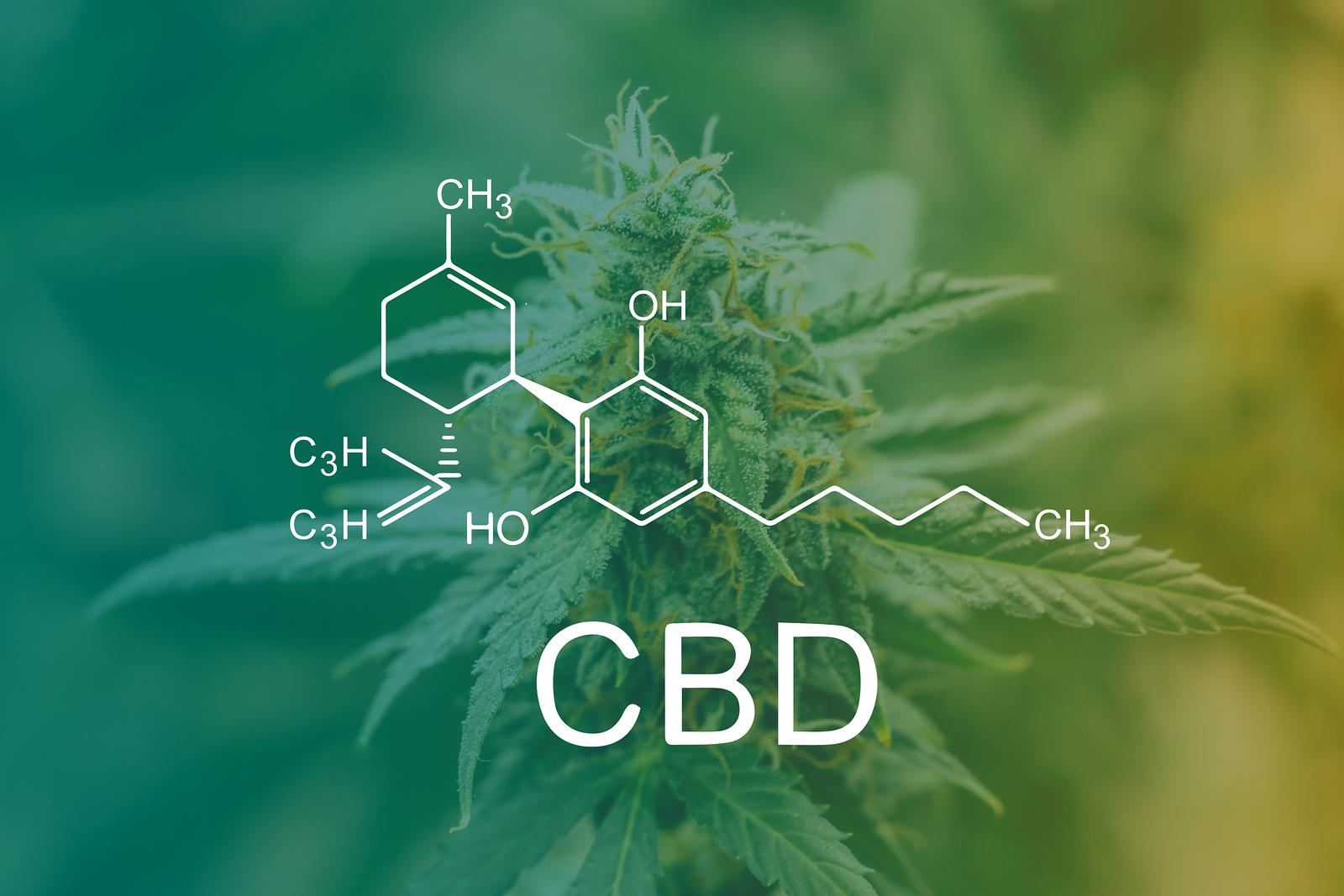 Marijuana Cbd Thc. Concepts Of Legalizing Medicinal Herbs Weed,